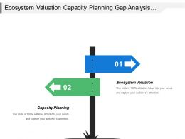 Ecosystem Valuation Capacity Planning Gap Analysis Solution Mapping