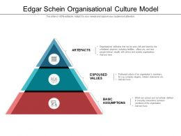 Edgar Schein Organisational Culture Model
