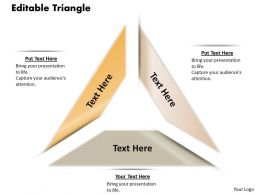 editable_triangle_diagram_for_powerpoint_Slide01