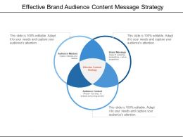 Effective Brand Audience Content Message Strategy