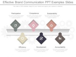 Effective Brand Communication Ppt Examples Slides