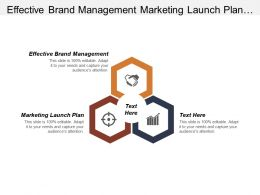 Effective Brand Management Marketing Launch Plan Talent Management