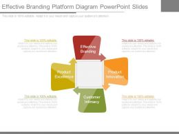 Effective Branding Platform Diagram Powerpoint Slides