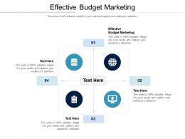 Effective Budget Marketing Ppt Powerpoint Presentation Pictures Display Cpb