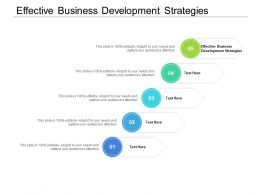 Effective Business Development Strategies Ppt Powerpoint Presentation Layouts Vector Cpb
