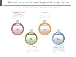 Effective Channel Sales Strategy Template Ppt Sample Download