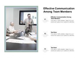 Effective Communication Among Team Members Ppt Powerpoint Presentation File Smartart Cpb