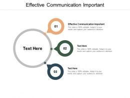 Effective Communication Important Ppt Powerpoint Presentation Layouts Cpb