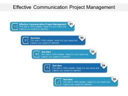 Effective Communication Project Management Ppt Powerpoint Styles Icons Cpb