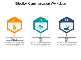 Effective Communication Workplace Ppt Powerpoint Presentation Summary Cpb