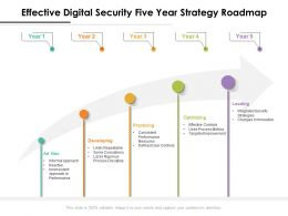 Effective Digital Security Five Year Strategy Roadmap