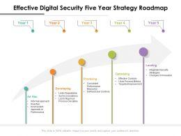 Effective Digital Security Five Year Strategy Roadmap