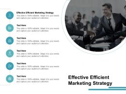 Effective Efficient Marketing Strategy Ppt Powerpoint Presentation Gallery Format Cpb