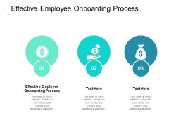 Effective Employee Onboarding Process Ppt Powerpoint Presentation Layouts Guidelines Cpb