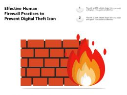 Effective Human Firewall Practices To Prevent Digital Theft Icon