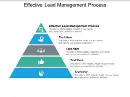 Effective Lead Management Process Ppt Powerpoint Presentation Icon Influencers Cpb