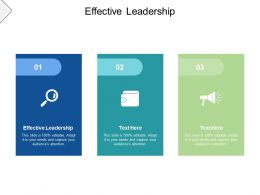 Effective Leadership Ppt Powerpoint Presentation Infographic Template Introduction Cpb