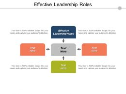 Effective Leadership Roles Ppt Powerpoint Presentation Model Visual Aids Cpb