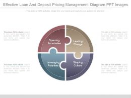 Effective Loan And Deposit Pricing Management Diagram Ppt Images