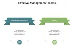 Effective Management Teams Ppt Powerpoint Presentation Styles Graphic Tips Cpb