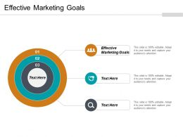 Effective Marketing Goals Ppt Powerpoint Presentation File Example Topics Cpb