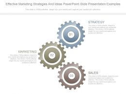 Effective Marketing Strategies And Ideas Powerpoint Slide Presentation Examples