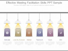 Effective Meeting Facilitation Skills Ppt Sample