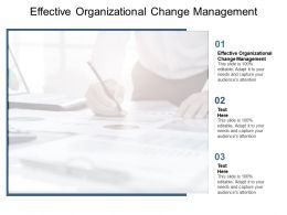 Effective Organizational Change Management Ppt Powerpoint Presentation Icon Model Cpb