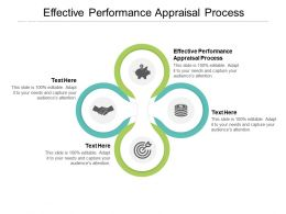 Effective Performance Appraisal Process Ppt Powerpoint Presentation Model Example Topics Cpb