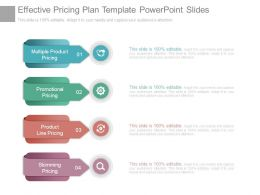 Effective Pricing Plan Template Powerpoint Slides