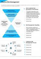 Effective Risk Management Presentation Report Infographic PPT PDF Document
