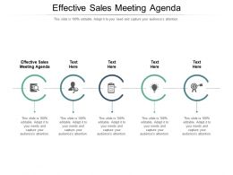 Effective Sales Meeting Agenda Ppt Powerpoint Presentation Portfolio Slide Download Cpb