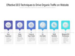 Effective SEO Techniques To Drive Organic Traffic On Website