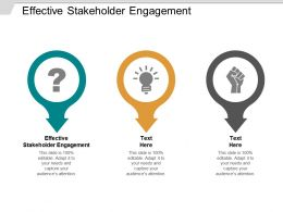 Effective Stakeholder Engagement Ppt Powerpoint Presentation Portfolio Example Introduction Cpb