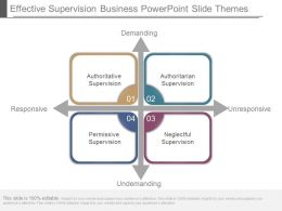 Effective Supervision Business Powerpoint Slide Themes