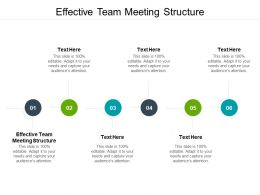 Effective Team Meeting Structure Ppt Powerpoint Presentation Gallery Cpb