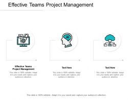 Effective Teams Project Management Ppt Powerpoint Presentation Icon Cpb
