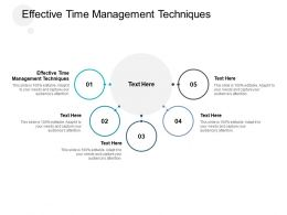 Effective Time Management Techniques Ppt Powerpoint Presentation Ideas Gallery Cpb