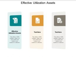 Effective Utilization Assets Ppt Powerpoint Presentation File Slide Portrait Cpb