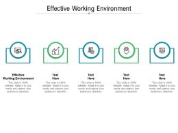 Effective Working Environment Ppt Powerpoint Presentation Professional Introduction Cpb