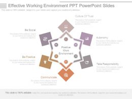 Effective Working Environment Ppt Powerpoint Slides