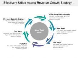 Effectively Utilize Assets Revenue Growth Strategy Interest Profits
