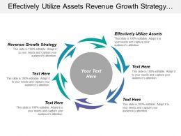 Effectively Utilize Assets Revenue Growth Strategy Interest Profits