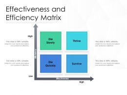 Effectiveness And Efficiency Matrix