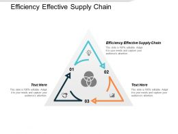 Efficiency Effective Supply Chain Ppt Powerpoint Presentation Ideas Deck Cpb