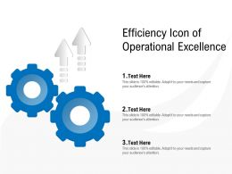 Efficiency Icon Of Operational Excellence