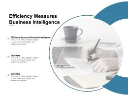 Efficiency Measures Business Intelligence Ppt Powerpoint Presentation Layouts Deck Cpb