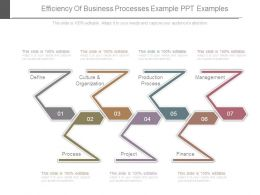 Efficiency Of Business Processes Example Ppt Examples