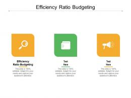 Efficiency Ratio Budgeting Ppt Powerpoint Presentation Icon Ideas Cpb