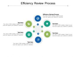 Efficiency Review Process Ppt Powerpoint Presentation Visual Aids Pictures Cpb